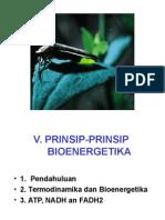 Bioenergetika.ppt