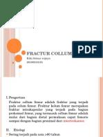 Fractur Collum Femur