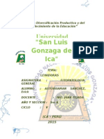 LEVADURA.docx