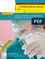 Dossier_Soude_FR_BD.pdf