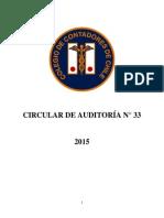 Circular-de-Auditoría-N°-33
