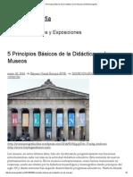 5 Principios Básicos de La Didáctica en Los Museos _ EVE Museografía