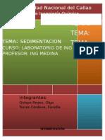 SEDIMENTACION (1).docx