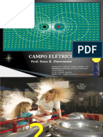Campo Eletrico Fsc1075