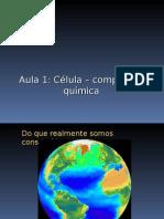 aula1_quimicacelular