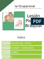 Terapia Ocupacional - Lesion Plexo Braquial