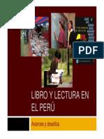 Ponencia_PNLL.pdf