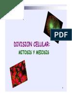 Mitosis Meiosis