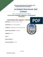 Contaminacion Urbana y Gestion Local