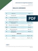 2do Informe Pitot.docx