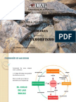 geologia 5.pdf