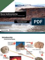 13 Rocas Sedimentarias