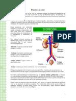 Articles-26627 Recurso Doc