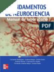 McGrawHill - Fundamentos de Neurociencia