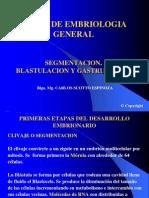 Segmentacion+Blastulacion+Gastrulacion