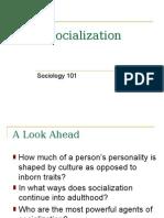 GdgesgesgChapter 04 Socialization
