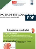 Anatomia, Fiziologia Si Imunologia Sistemului Urinar