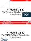 HTML5 CSS3 and the Future