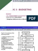 Topic 3 Budgeting Process 2010 SM