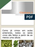 Citologia I