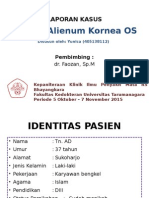 corpus alienum kornea