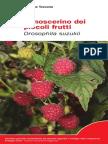 Moscerino Piccoli Frutti