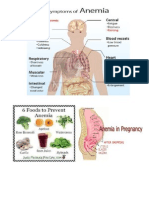 8 Ways to Prevent Anemia