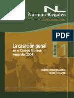 la casacion penal.pdf