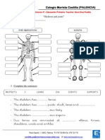 Activity 2 - Skeleton and Joints