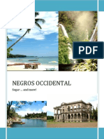 Negros Occidental - The Economic and Political Situation