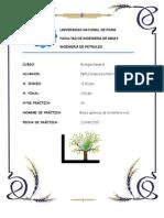 Informe de Laboratorio de Bilogia General #03
