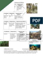 Características de Los Ecosistemas de México