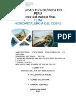 Plan de Trabajo Final 2015 (1)