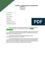 Caderneta de Campo - Dunas - Vitor m m
