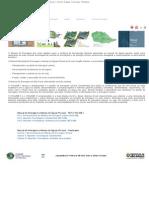 PMAPSP - Plano Diretor de Drenagem e Manejo de Águas Pluviais Do Município de São Paulo