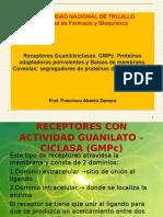 Receptor Guanililciclasa. GMPc.