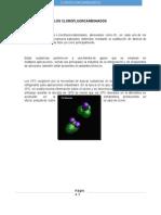 clorofluorcarbonados