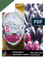 Presentacion Del Sr Alonso Velasquez