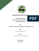 Proyecto Del Carbon Activo Xz2