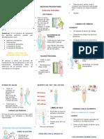 BUENAS PRACTICAS DE MANUFACTURA E HIGIENE