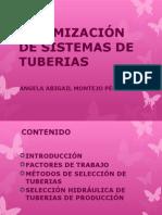 """1.3.8 Optimizaciã""""n de Tuberias Expo"""