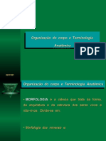 Organização do corpo e terminologia anatômica-resumo-Medicina