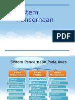 Sistem Pencernaan aves.pptx