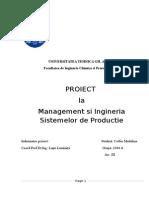proiect misp 1