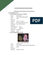 Sifat Optik Mineral Primer