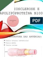 apresentacao bioquimca (1)