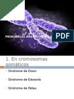 alteraciones cromosomicas