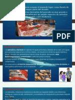 Microbiologia Pescados e Hidrobiologicos