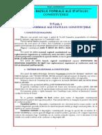 4 CURS 4 CONSTITUTIE- I.pdf