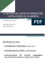 IVC Costos Agropecuarios 2013